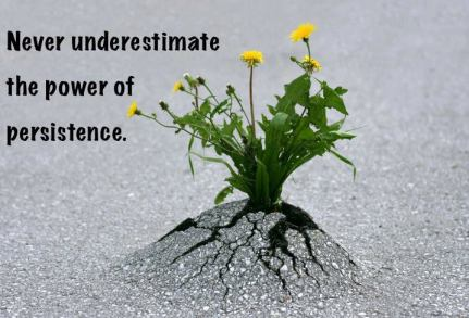 power-of-persistence